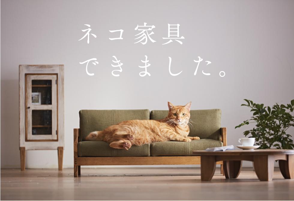 大川のネコ家具のベッドやソファーの値段は?購入方法や通販を調査!
